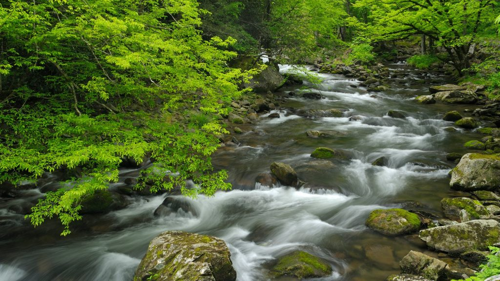Cascades on Little Pigeon River in Tremont of Great Smoky Mountains National Park, Tennessee, USA