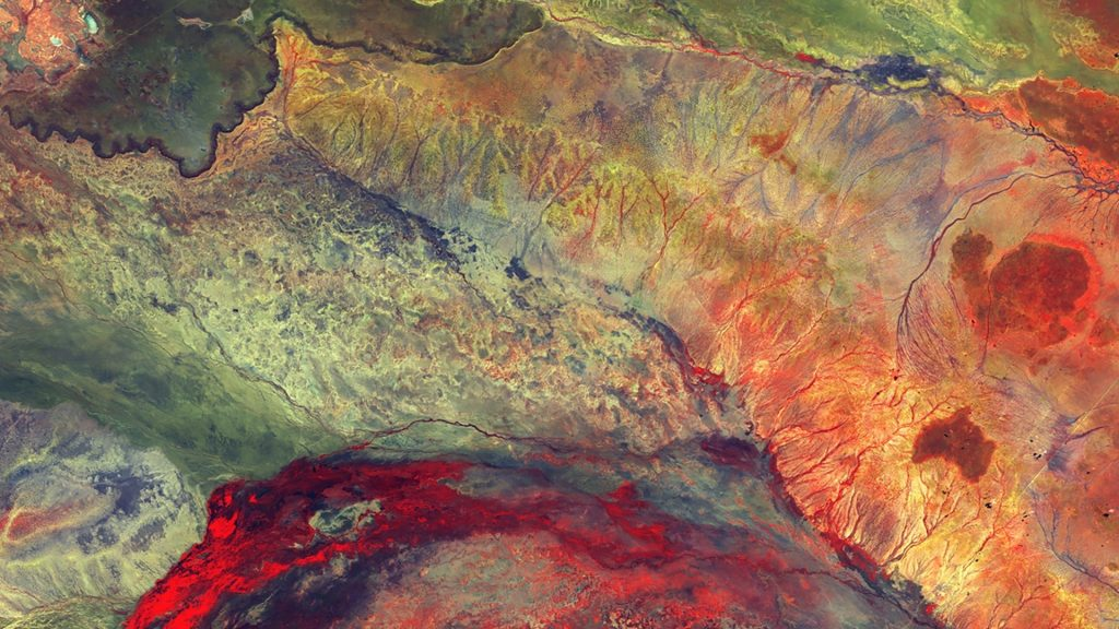 The Lorian swamp and inland delta in north-eastern Kenya satellite photo