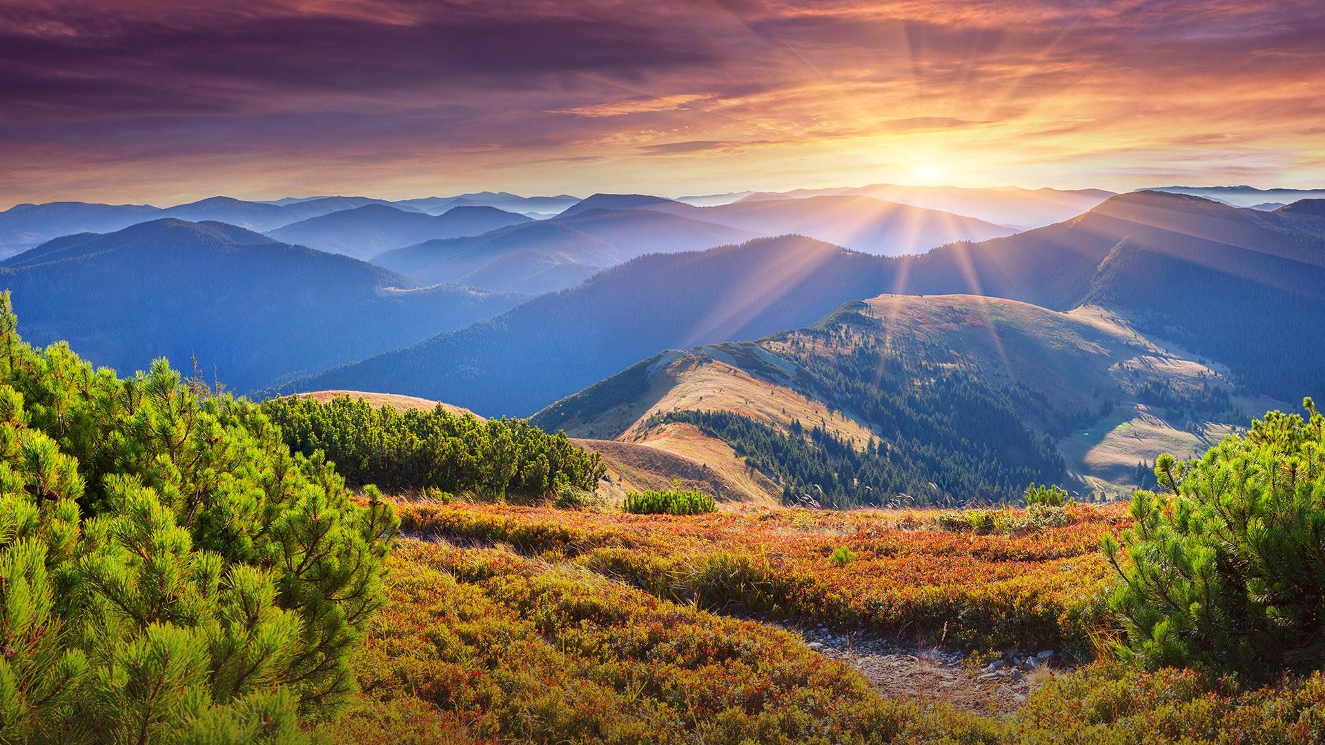 Colorful autumn sunrise in Carpathian mountains, Ukraine ...