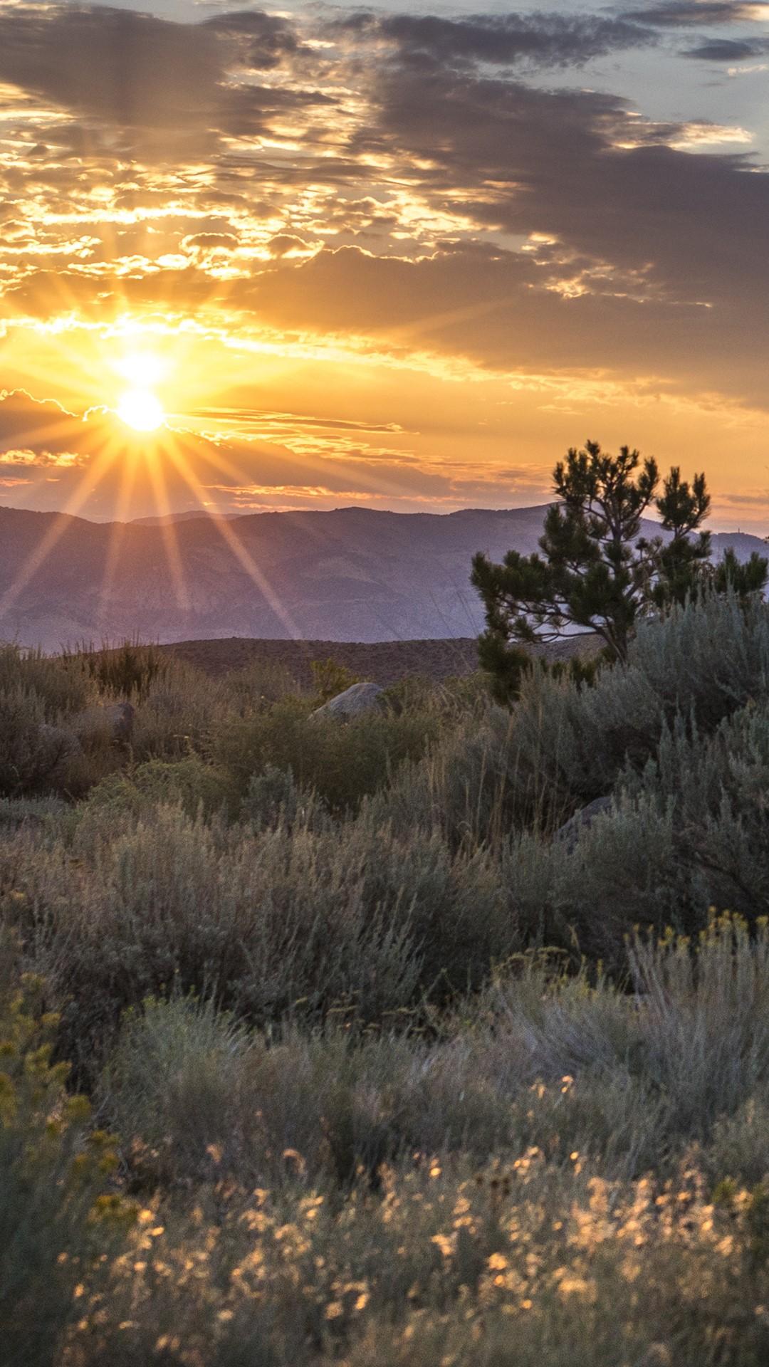 Scenery Of Desert At Sunrise Reno Nevada Usa Windows