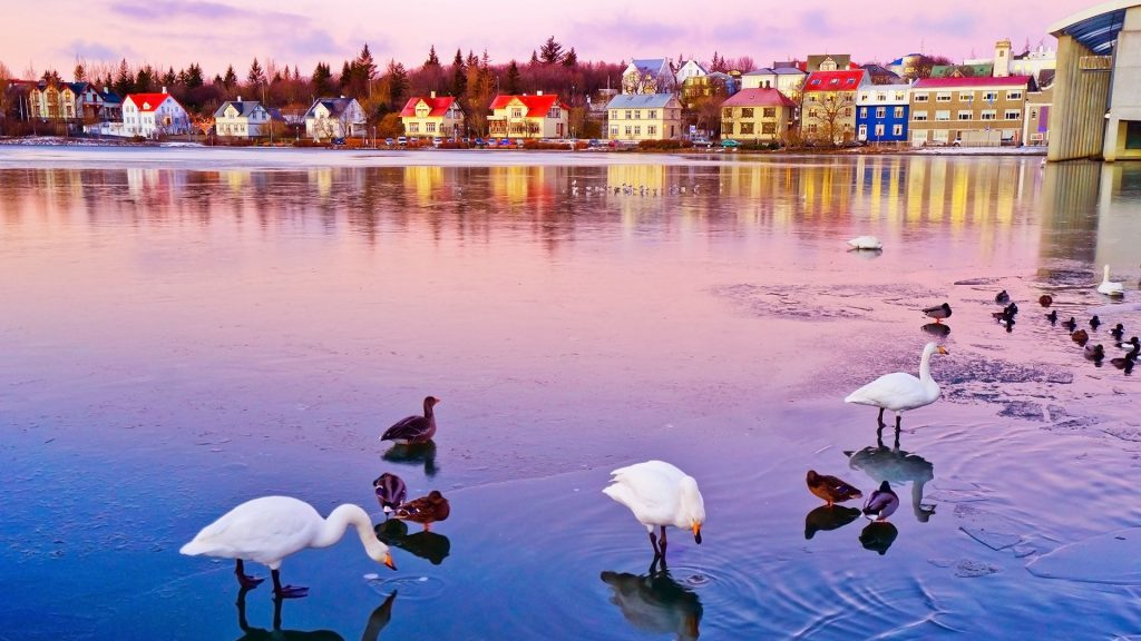 View of the Tjornin Lake in Reykjavik at dawn in winter, Iceland