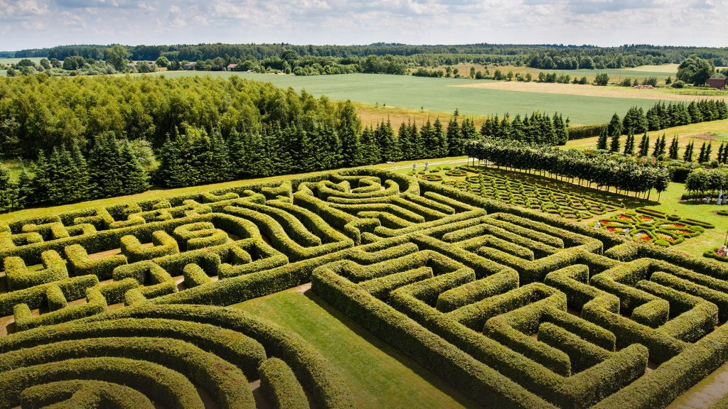 Green bushes labyrinth, hedge maze, Poland