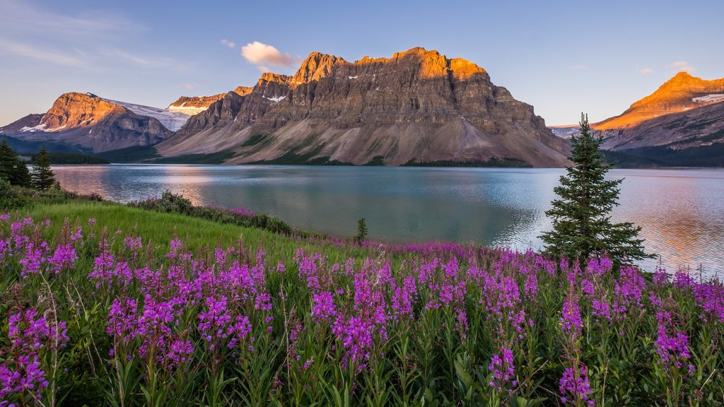 Sunrise at Bow Lake in Banff National Park, Alberta, Canada