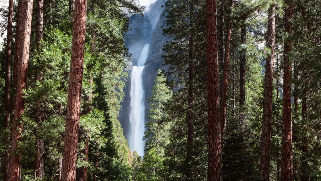 Lower Yosemite fall, Yosemite National Park, California, USA