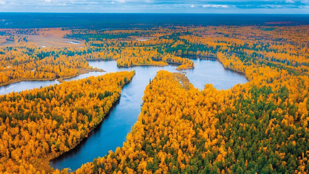 Tundra aerial photography, Yamalo-Nenets Region, Russia