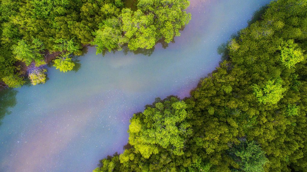 Aerial view of green mangrove forest and red blue river in Pranburi, Thailand