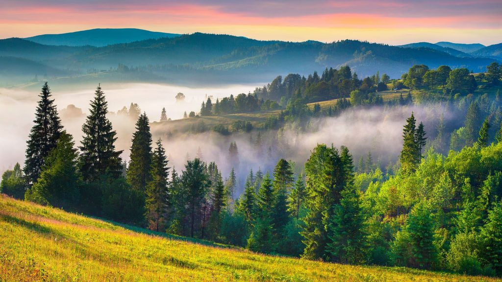 Colorful summer sunrise in the Carpathian mountains, Ukraine