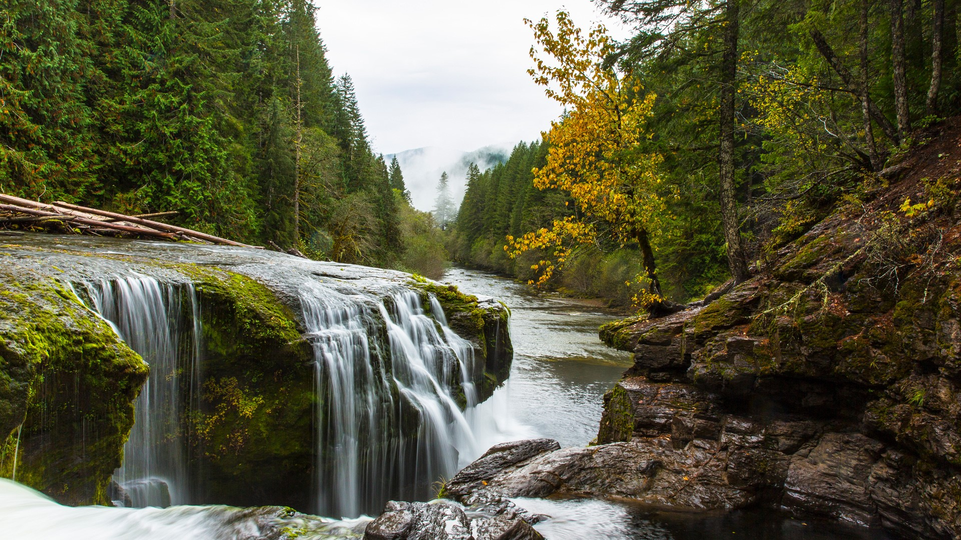 waterfall near mount saint helens lewis river washington