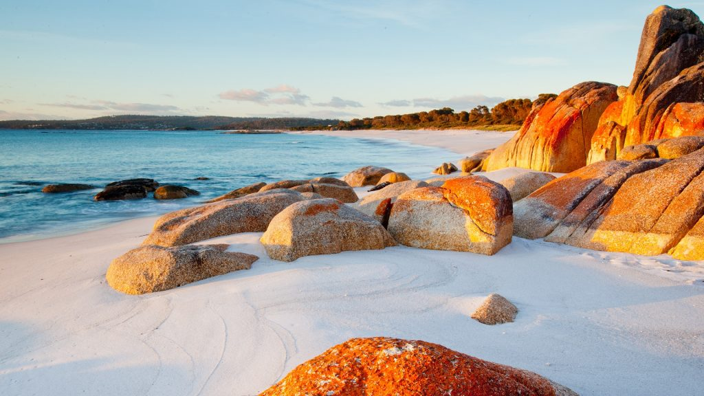 Red lichen covered rocks on beach, Bay of Fires, Tasmania, Australia