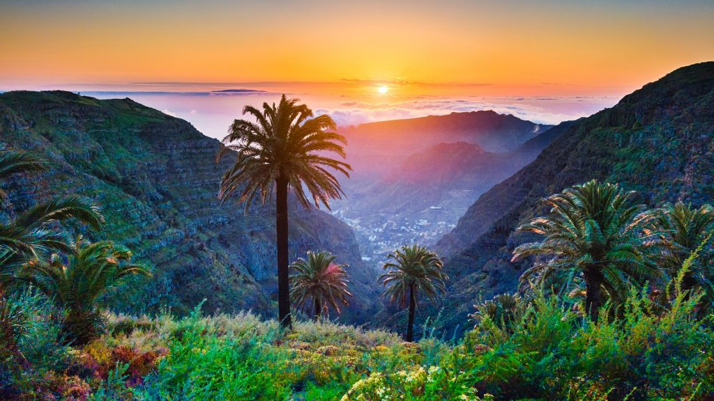 Tropical scenery with palm trees and mountains at sunset, Canary Islands, Spain