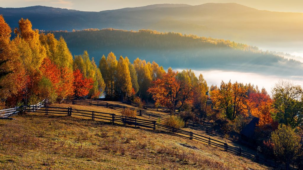 Field and orchard in autumn at sunrise, mountainous countryside with fog in distant