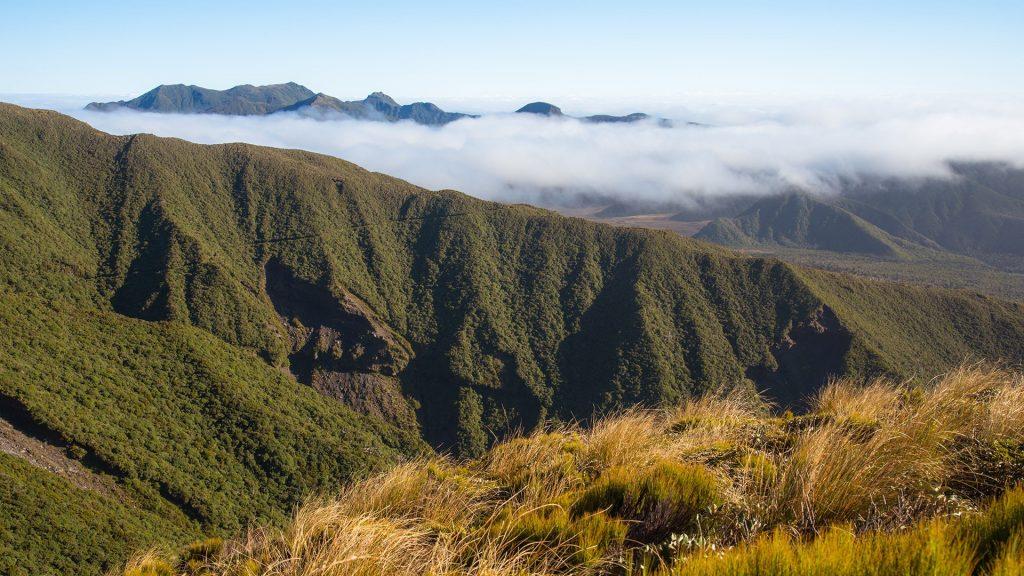 Egmont National Park landscape view in Taranaki region of New Zealand's North Island