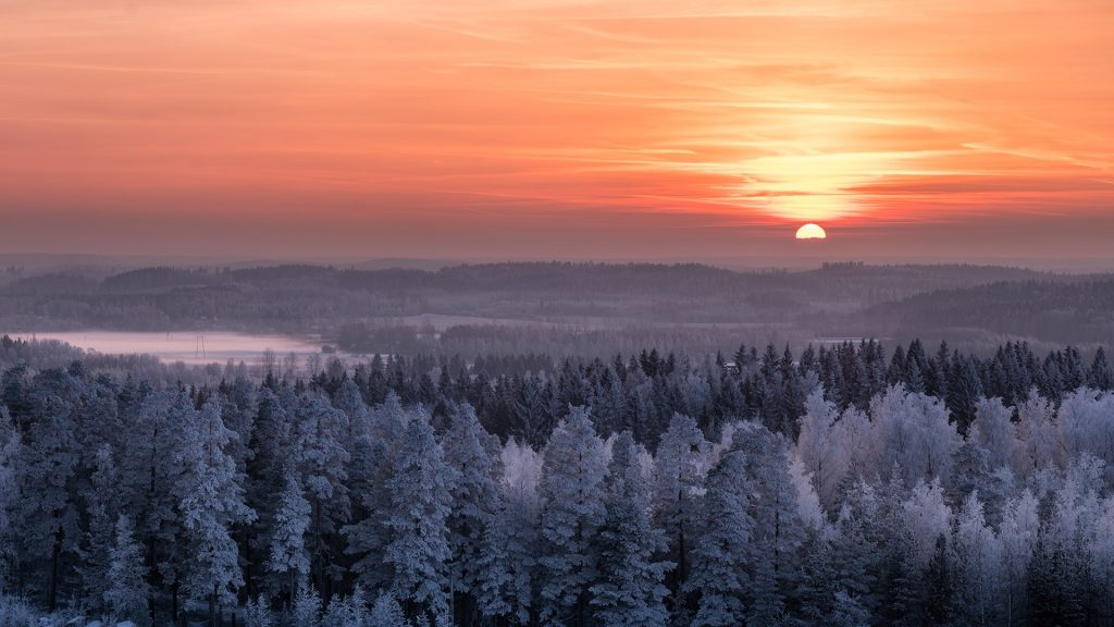 Winter landscape with frosty trees and sunset in evening, Hyvinkää, Finland