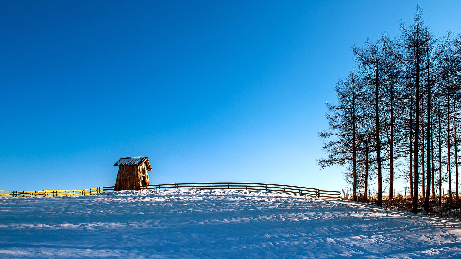 Wooden cottage in winter, Daegwallyeong Sheep Farm in Gangwondo