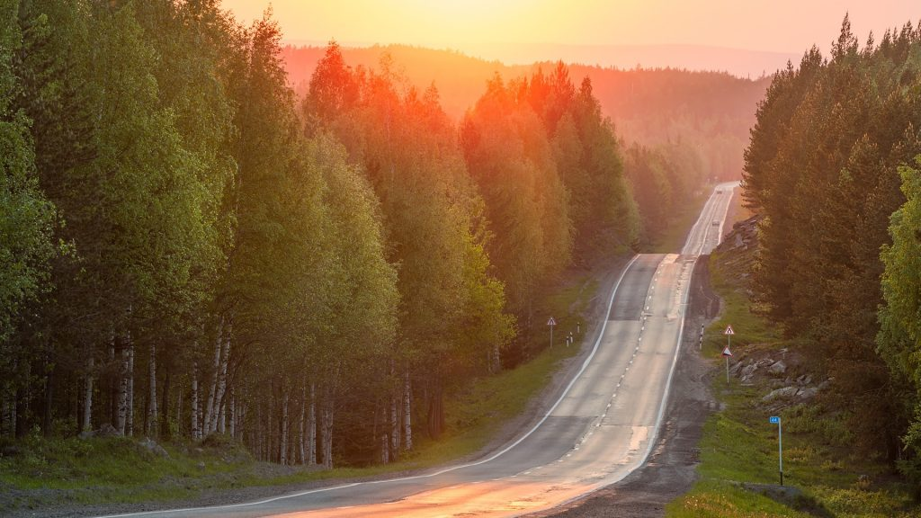 Hilly trail through the forest at sunset, Russia