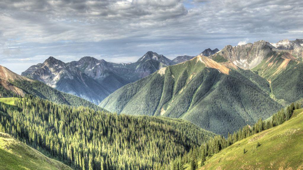 Pines and mountain range view in Rocky Mountains, Silverton, Colorado, USA