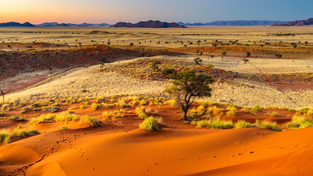 Sunset light over the wide open landscape of the Namib-Naukluft National Park, Namibia