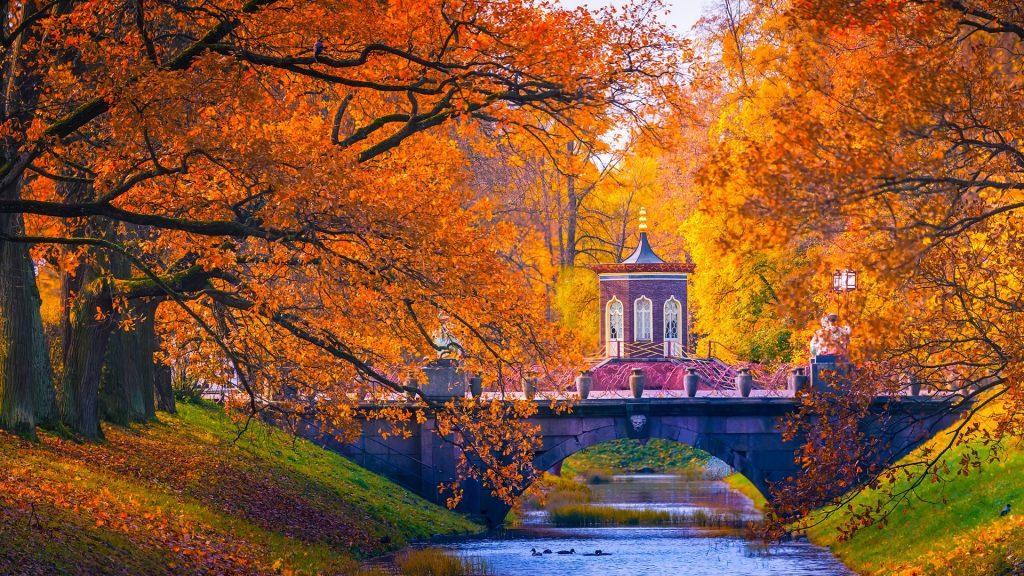Catherine Park autumn landscape, Tsarskoye Selo (Pushkin) near St. Petersburg, Russia