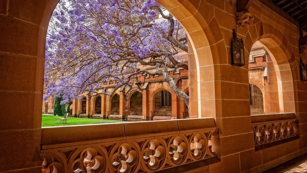 View through passageway towards courtyard with Jacaranda tree at University of Sydney, Australia