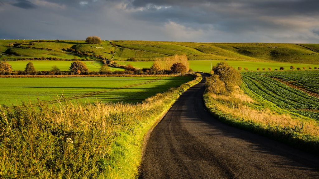 Fields at Hackpen Hill on the Malborough Downs in the late afternoon autumn, Wiltshire, England, UK