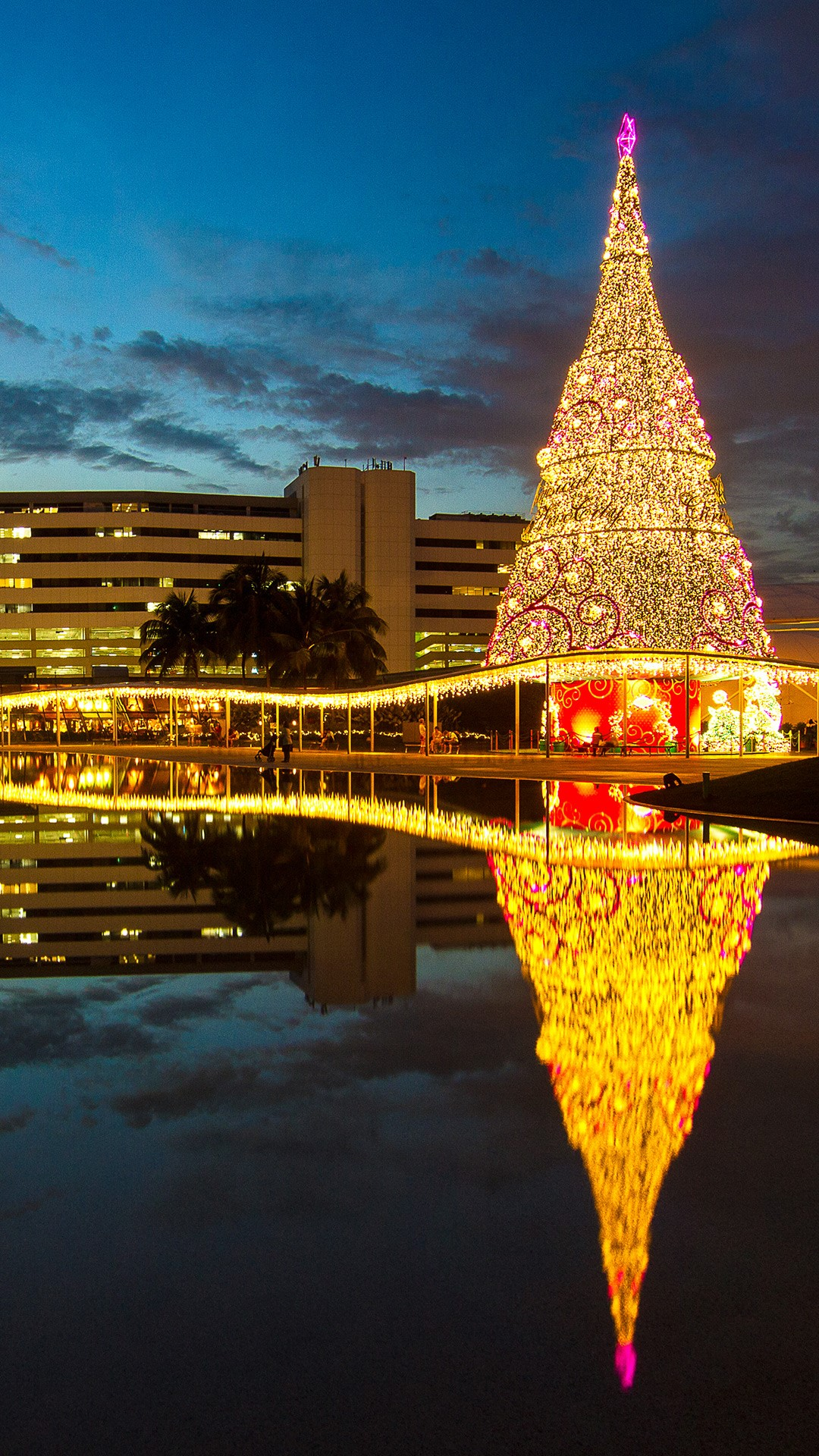 An illuminated Christmas Tree next to a shopping mall in Singapore | Windows 10 Spotlight Images