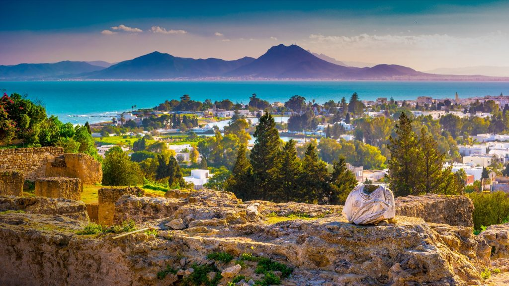 View from hill Byrsa with ancient remains of Carthage and landscape, Tunis, Tunisia