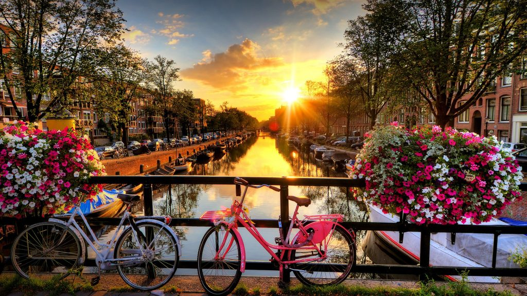 Sunrise over canal with flowers and bicycles on the bridge in spring, Amsterdam, Netherlands