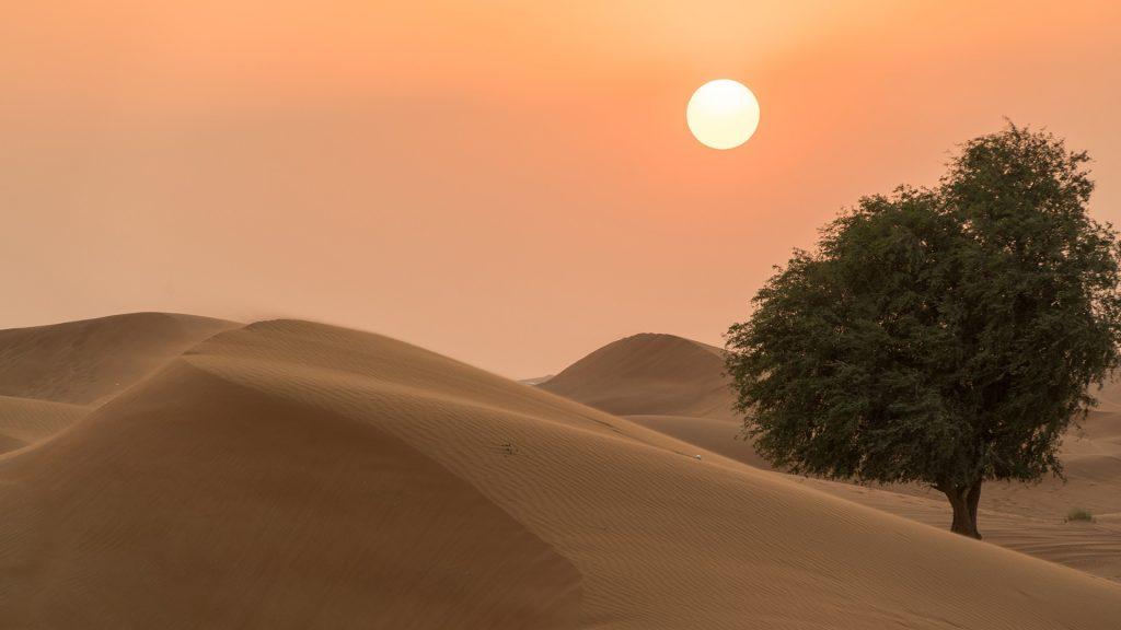 Sunset over Desert, UAE