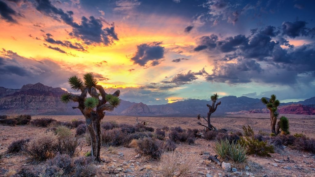 Desert monsoon, Red Rock Canyon, Las Vegas, Nevada, USA