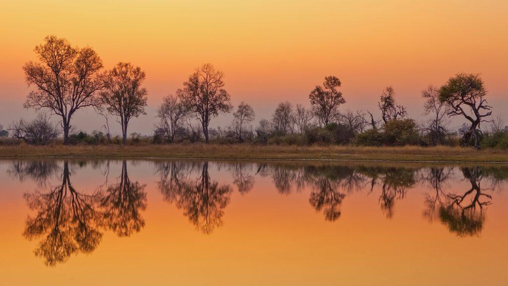 Dawn approaches the Okavango Delta, Moremi Game Reserve, Botswana