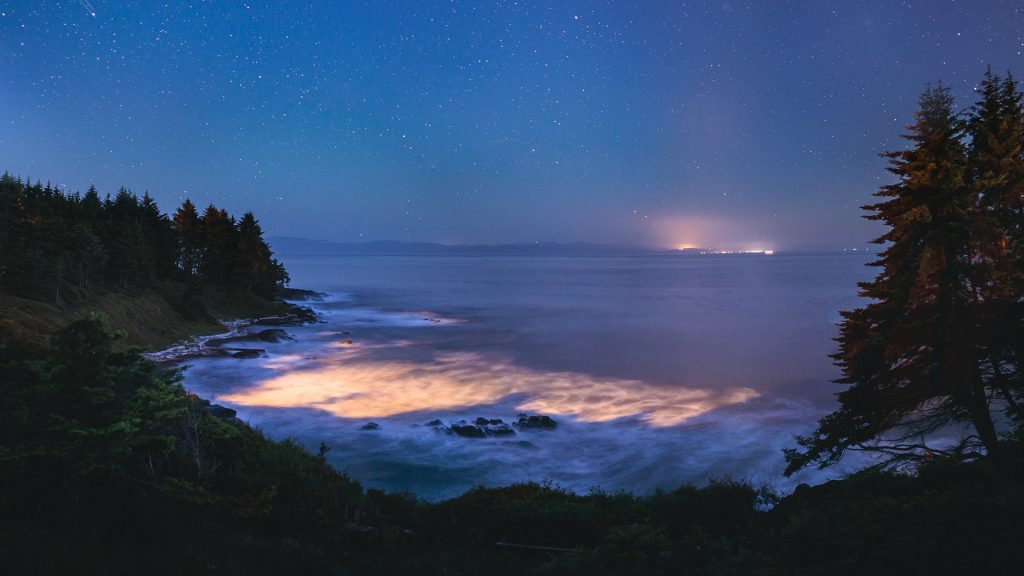 Bio-luminescence in ocean water at the coast of Vancouver Island, Canada