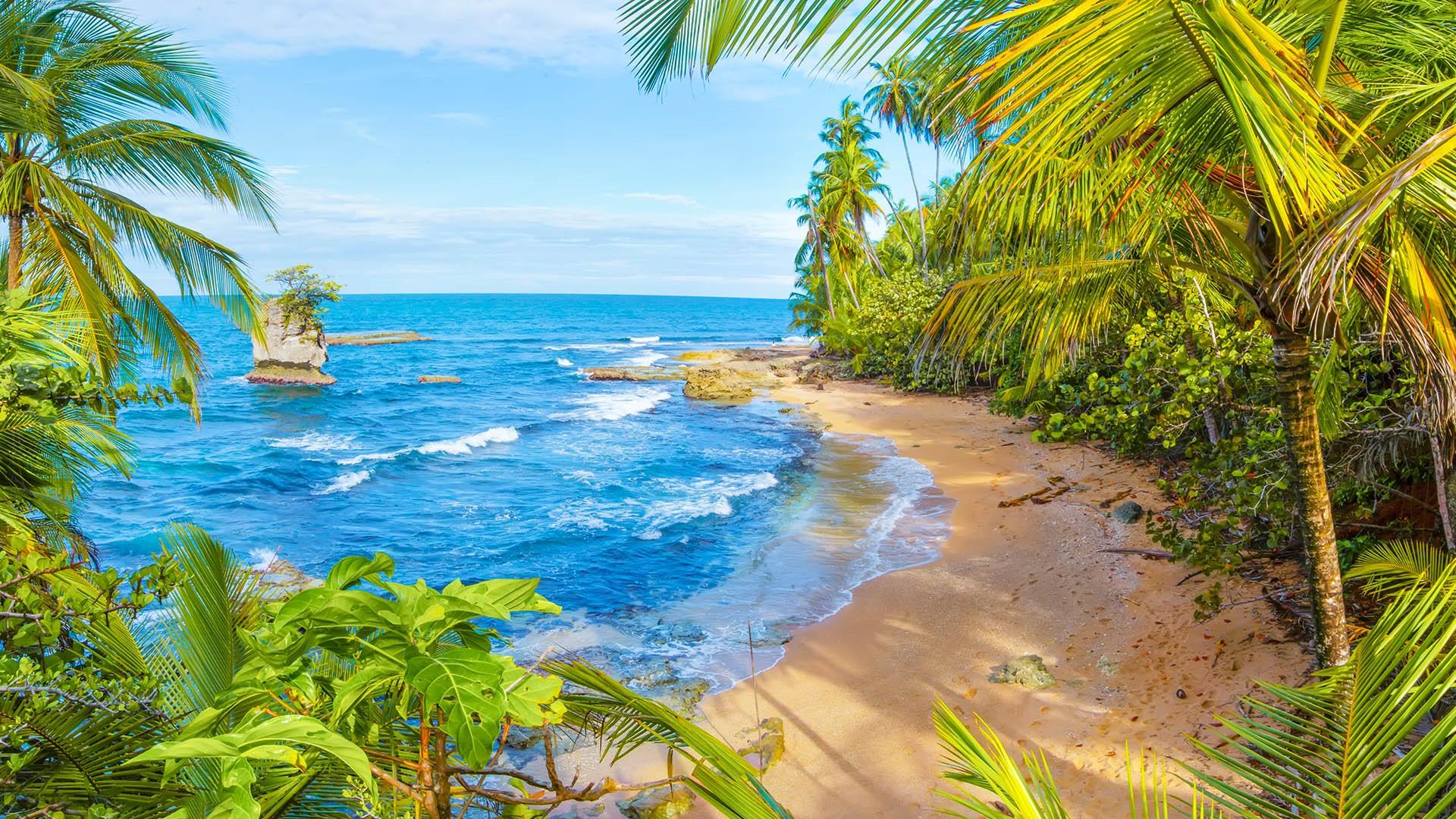 Manzanillo Wildlife Refuge Beach Limon Costa Rica Windows 10 Spotlight Images