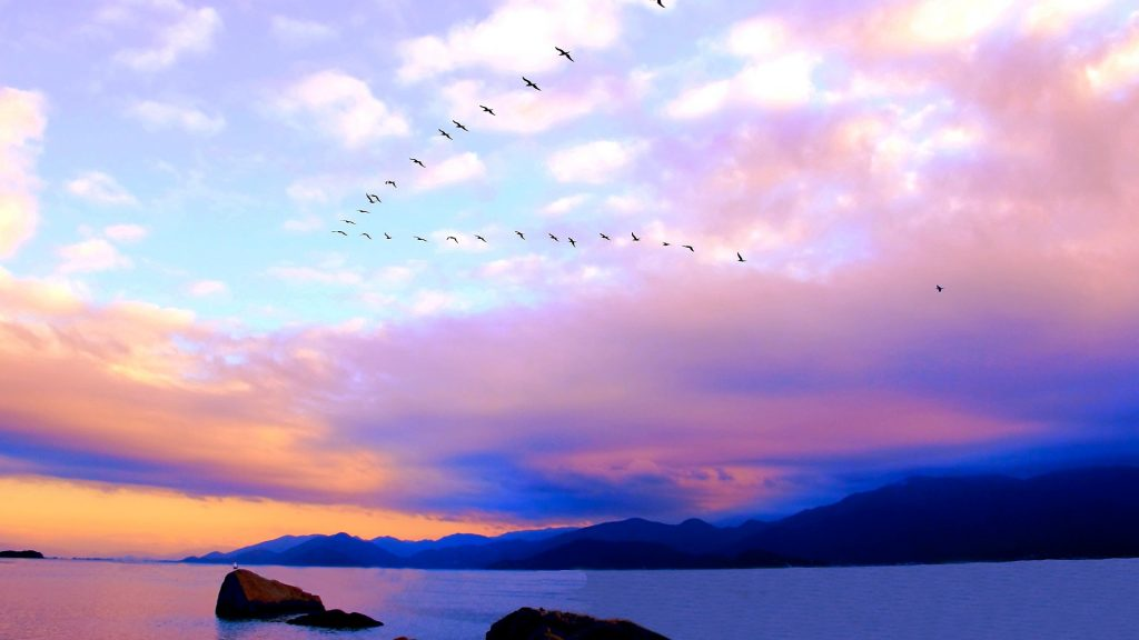 Sunset with white and magenta clouds, blue mountains and flock of birds, Southern Brazil