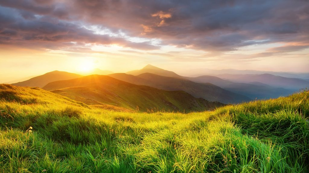 Mountain valley landscape during sunrise at summer time, Carpathian mountains, Ukraine
