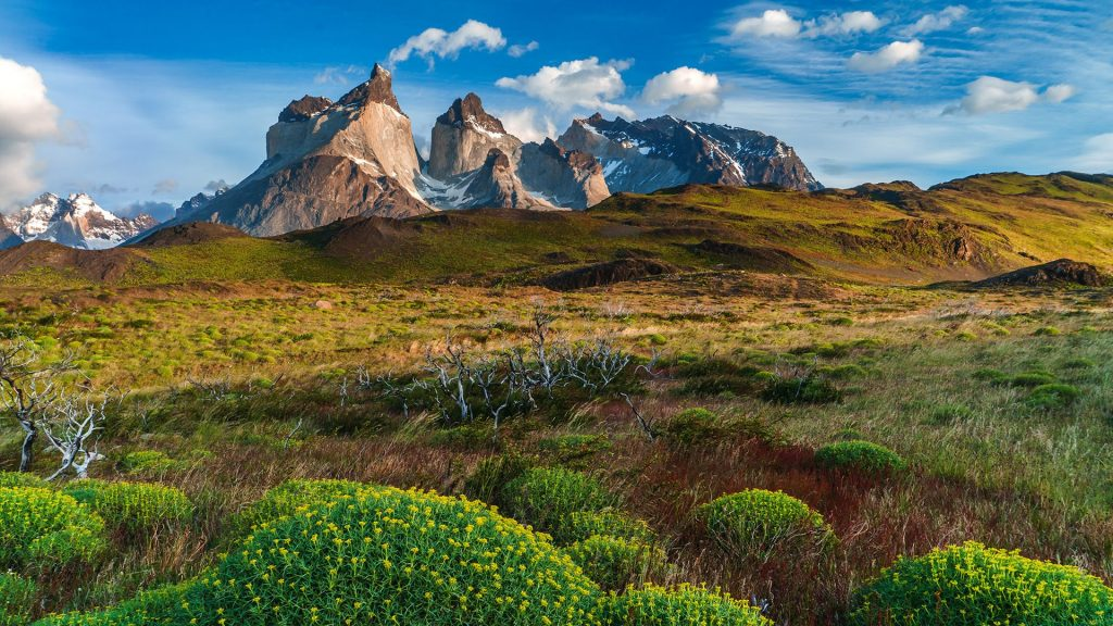 Landscape at Lago Pehoé lake, National Park Torres del Paine in southern Chile
