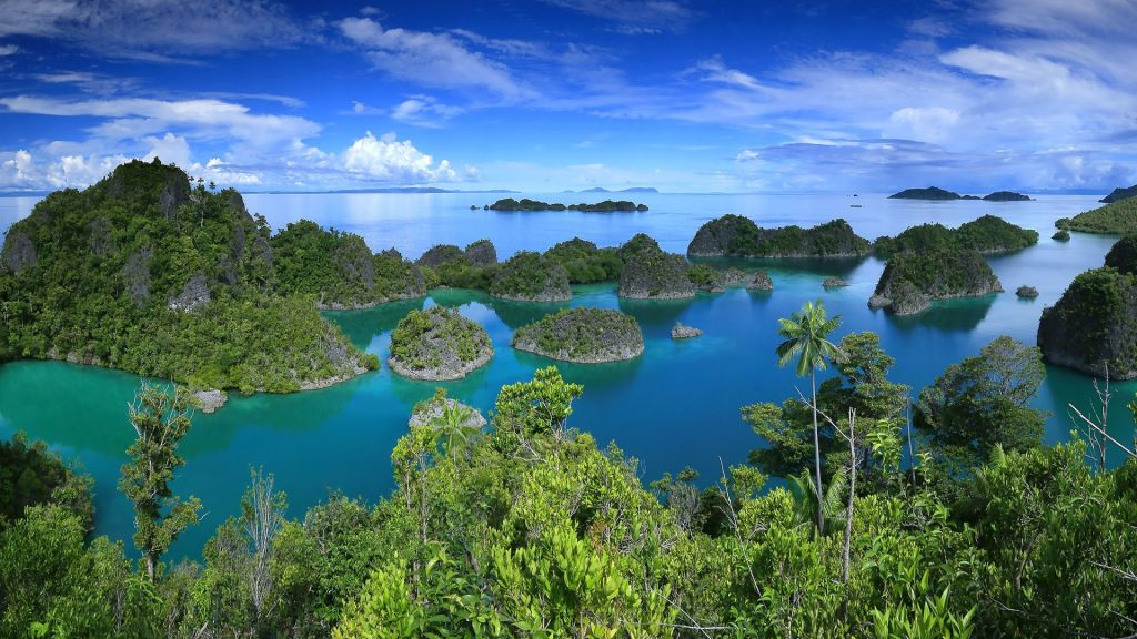 Landscape with Raja Ampat islands, New Guinea, West Papua province, Indonesia