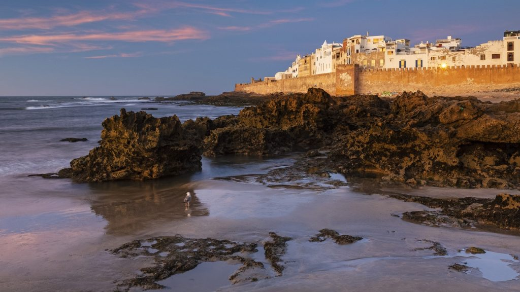 View of the old town at dusk on the Atlantic coast, Essaouira, Mogador, Morocco