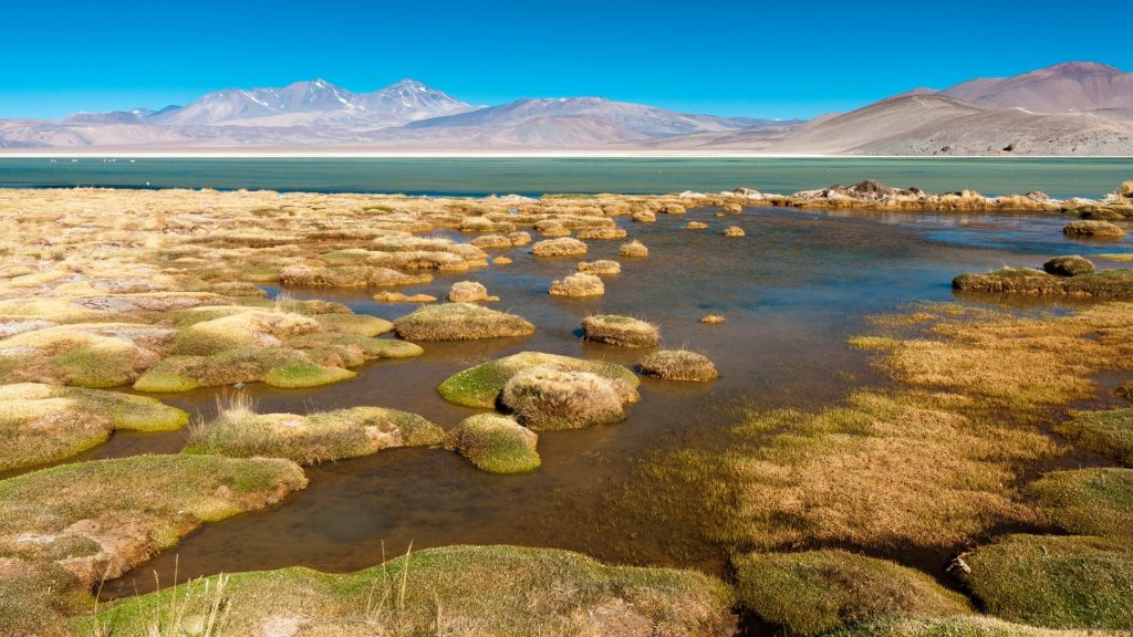 Santa Rosa Lagoon, Nevado Tres Cruces National Park, Region III of Atacama, Chile