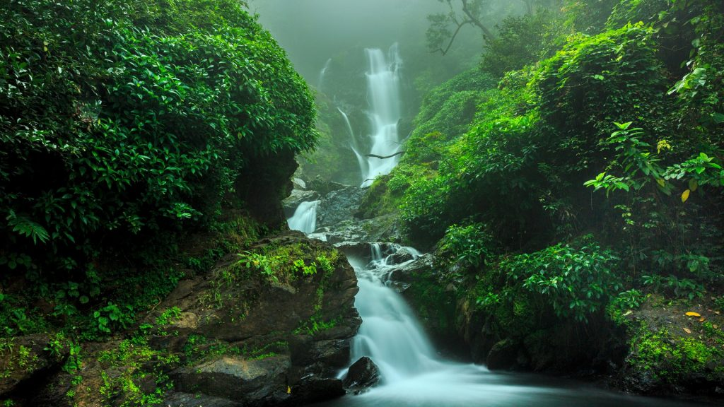 Waterfall in forest, Yanam, India