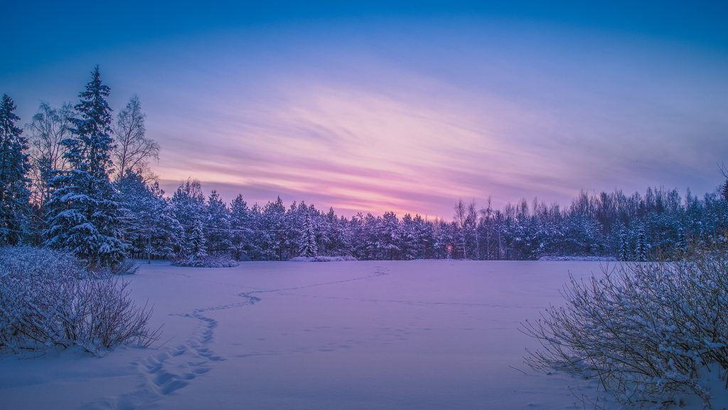 Cold and snowy winter scene at sunset, Helsinki, Finland