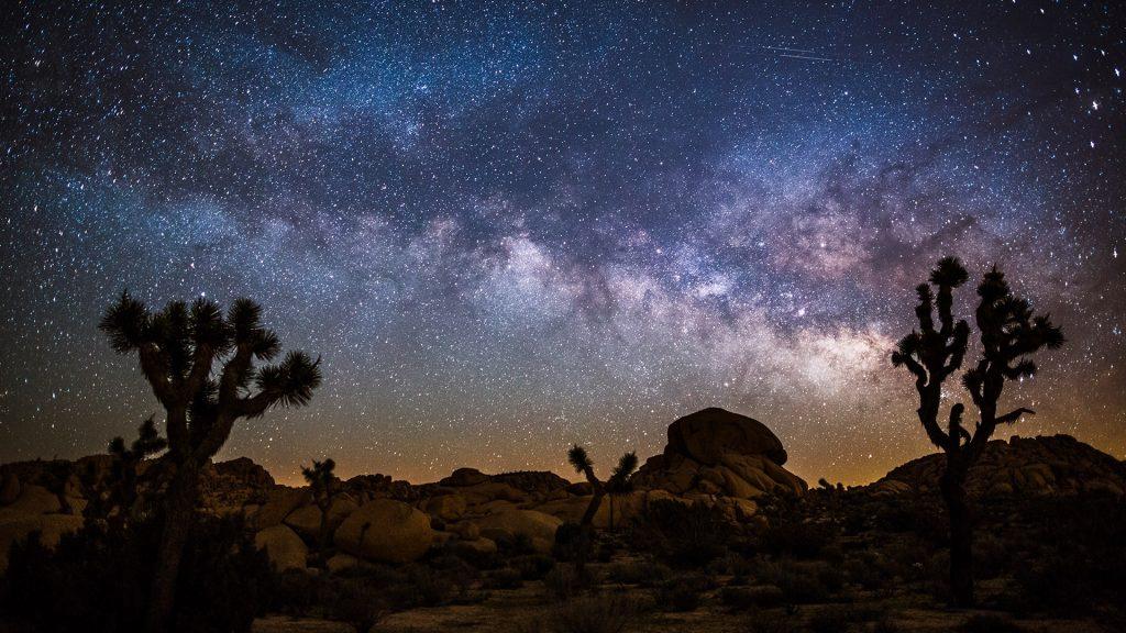 Desert landscape at night with Milky Way, Joshua tree national park, California, USA