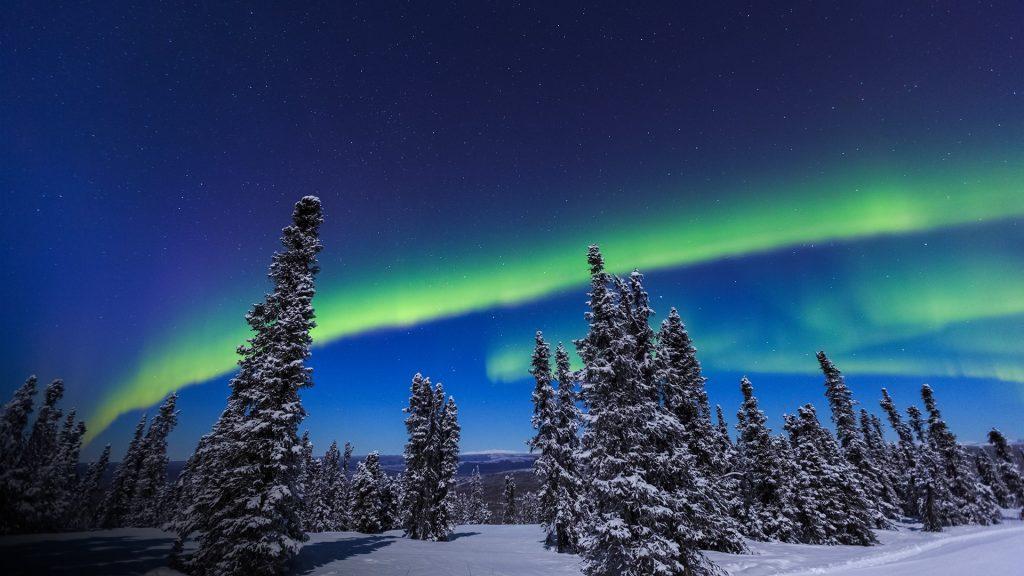 Aurora borealis, Northern Lights above tent lit up with lantern, Chena Resort, Fairbanks, Alaska, USA